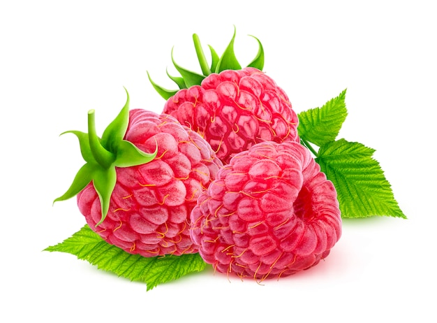 Raspberry isolated on white with clipping path Premium Photo