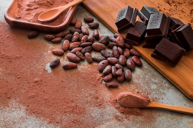 Raw cocoa beans and powder with chocolate cubes Photo