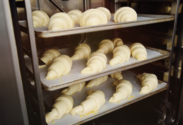 Raw croissants prepared for close-up baking in the oven Premium Photo