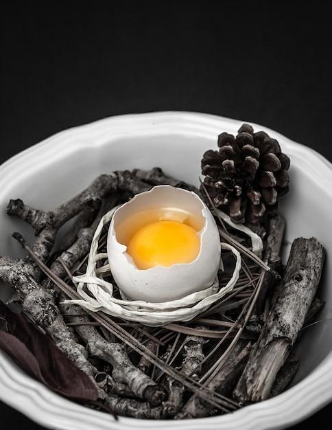 ボウルに枝を持つ生卵 無料写真