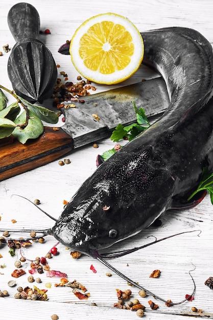 Raw fish catfish Premium Photo