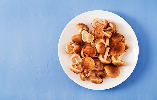 Raw fresh mushroom shiitake on blue background. top view. flat lay Premium Photo