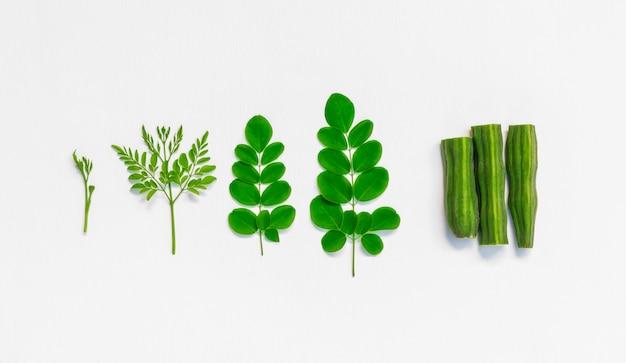 Raw of monriga plant leaf and drumstick. Premium Photo