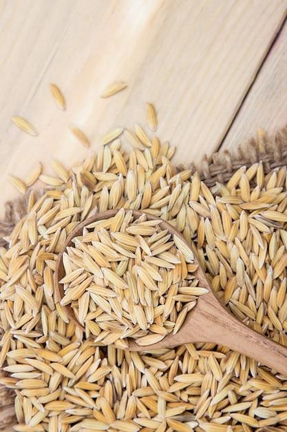Raw paddy rice on spoon Premium Photo