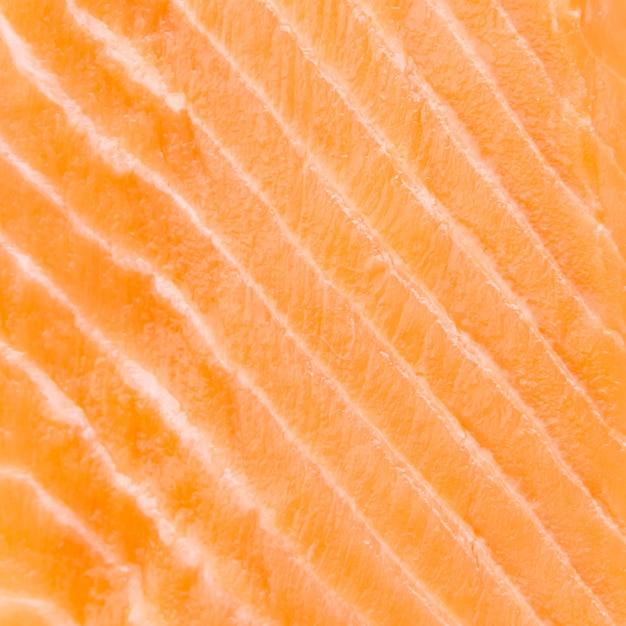 Raw salmon meat Free Photo