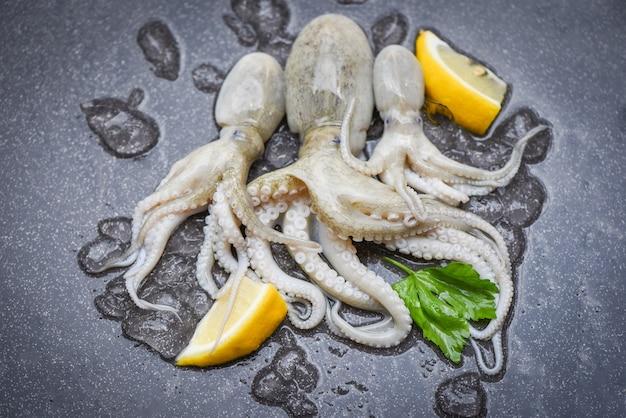 Сырые кальмары на льду свежие кальмары осьминоги или каракатицы Premium Фотографии