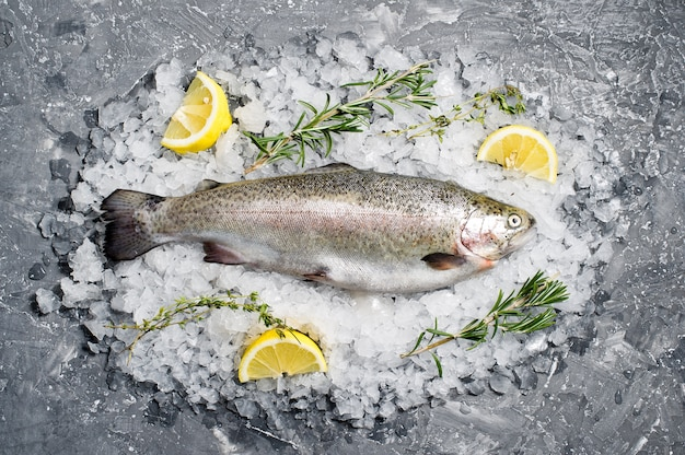 Raw trout on ice. ingredients rosemary, lemon. Premium Photo