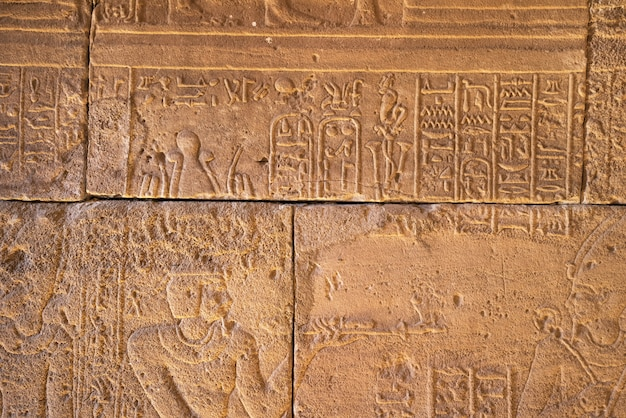 Real hieroglyphic carvings on the walls of an ancient egyptian temple. Premium Photo