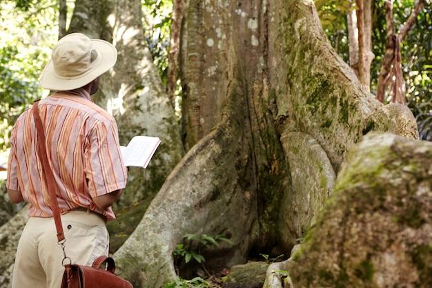 Vista posteriore del biologo maschio caucasico che indossa cappello e borsa in pelle esplorando la giungla nel paese tropicale, in piedi davanti al grande albero, tenendo il taccuino e prendendo appunti durante l'esame della pianta Foto Gratuite