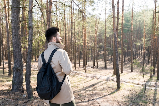 Rear view of a man with his backpack standing in the forest Free Photo