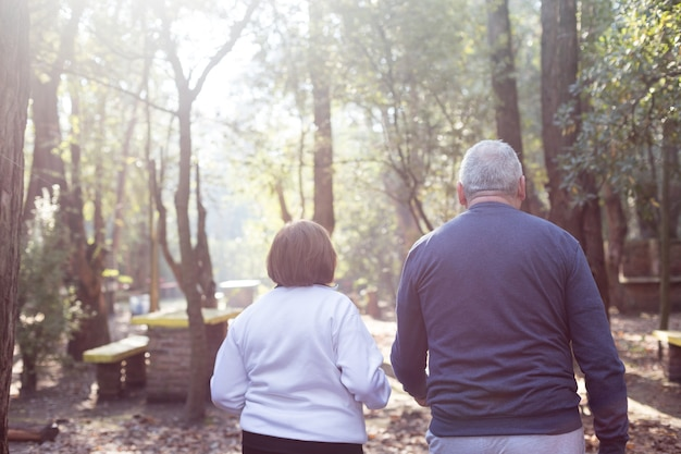 Rear view of retired couple walking at sunset in the park Free Photo