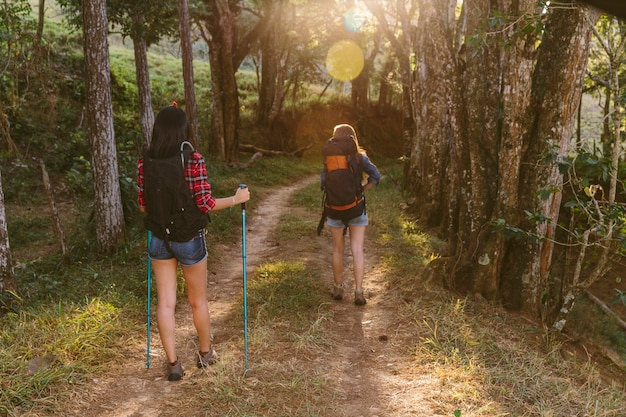 Rear view of two women hiking in forest Free Photo