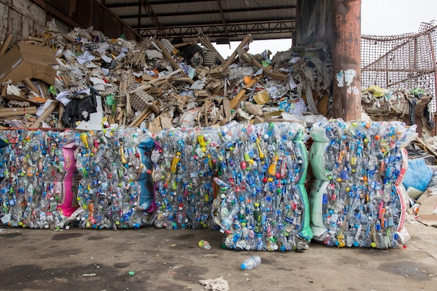 Recycle plastic from water bottle Premium Photo