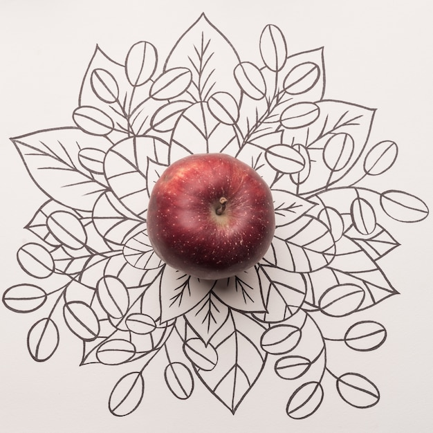 Red apple over outline floral background Free Photo