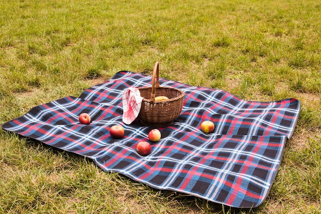 Red apples on blanket with picnic basket in the park Free Photo