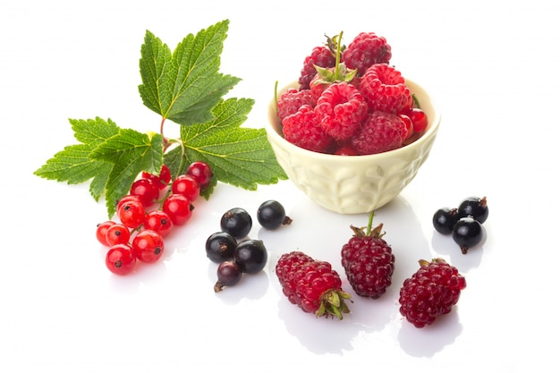 Red and black currants with green leaves, raspberries in a bowl and  loganberry Premium Photo