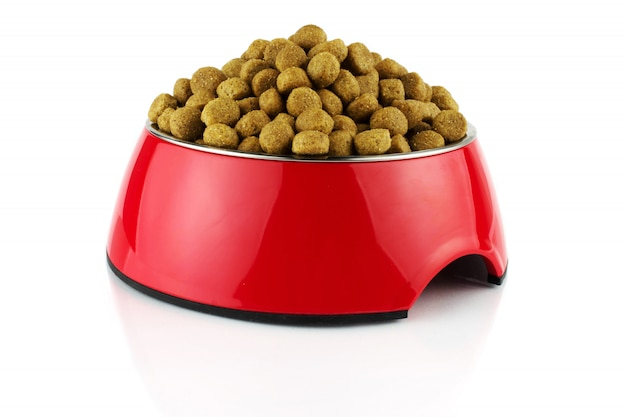 Red bowl methacrylate food container for dog or cat with food. isolated Premium Photo