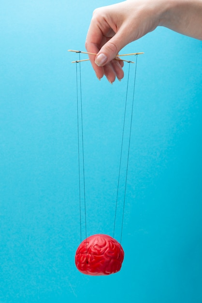 A red brain on a blue background, a hand that manipulates the mind like a puppet. Premium Photo