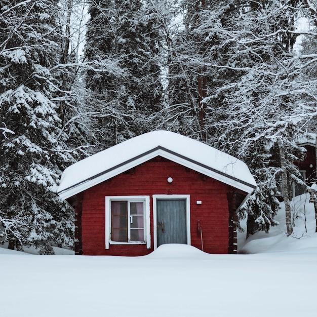 雪に覆われた森の赤い小屋 無料写真