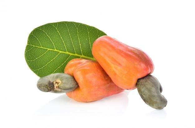 Red cashew fruit isolated Premium Photo