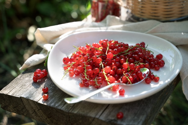 Красная смородина на белой плите на деревянной доске в саде на солнце. Premium Фотографии