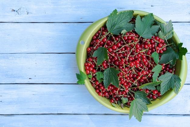 緑のボウルに葉と赤スグリ Premium写真