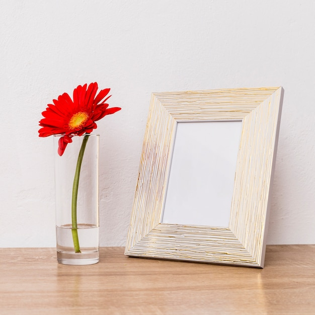 Red flower in glass and photo frame on table Free Photo