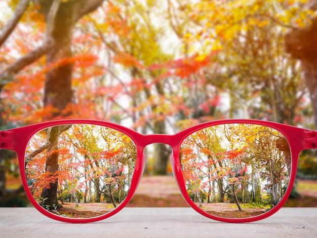 Red glasses lense over autumn park background. Premium Photo