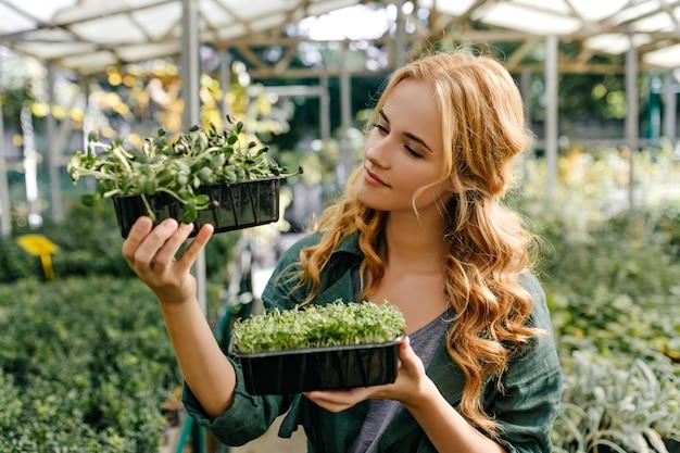 赤毛の甘い女性は、常緑の小さな植物を熱心に調べます。庭のヨーロッパの外観のモデルのクローズアップの肖像画。 無料写真