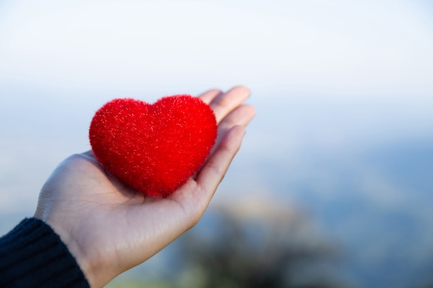 Red heart on hand nature background in love and peace concept Free Photo