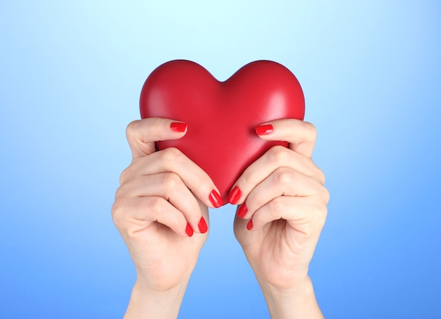 Red heart in woman's hands on blue background Premium Photo