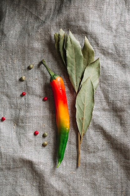 Red hot chilli pepper with dried leaves Free Photo