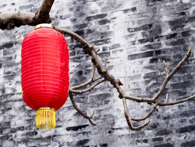 Red lantern hanging for celebration in chinese new year background with copy space Premium Photo