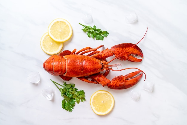 Red lobster with ice and lemon Premium Photo
