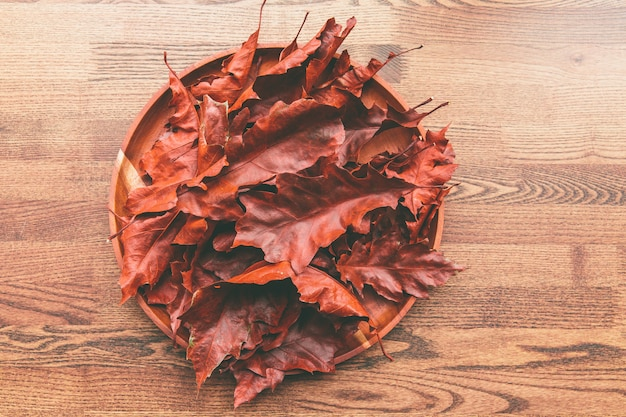 Red oak leaves in wooden plate on a table Premium Photo