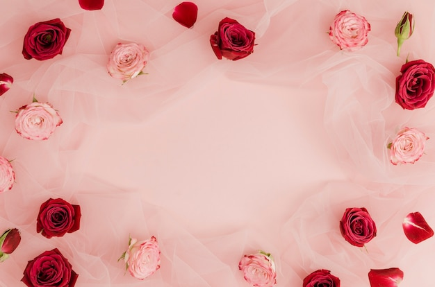 Red and pink roses copy space Free Photo