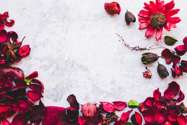 A red potpourri composition against white textured background Free Photo