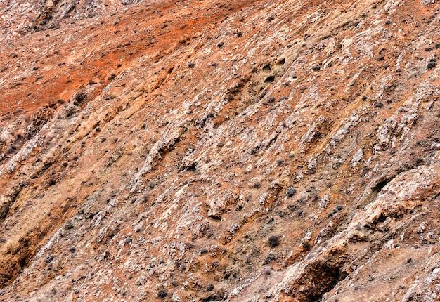 Superficie rocciosa rossa con molti cespugli - ottima per uno sfondo fresco Foto Gratuite
