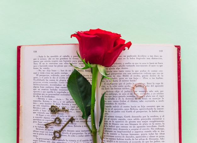 Red rose branch with wedding ring on book Free Photo