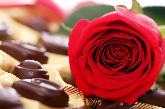 Red rose and chocolate candies Free Photo