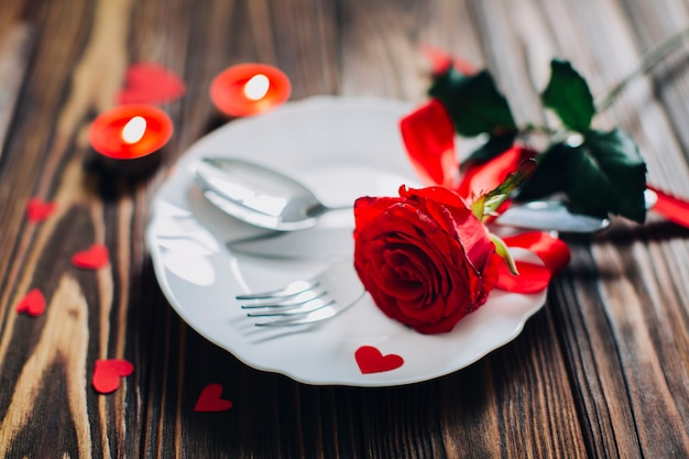 Red rose on plate Free Photo