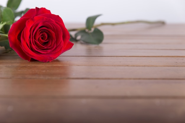 Red Rose On Table Photo Free Download