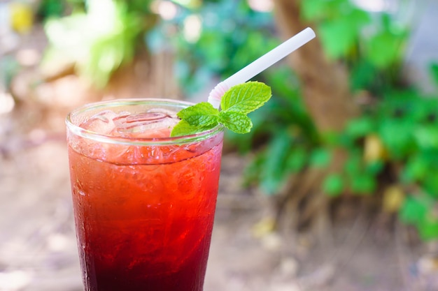 Red roselle juice with green peppermint in nature. Premium Photo