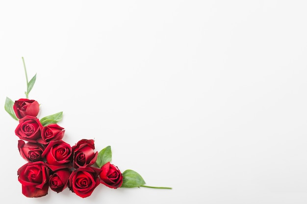 red roses decoration on the corner of white background