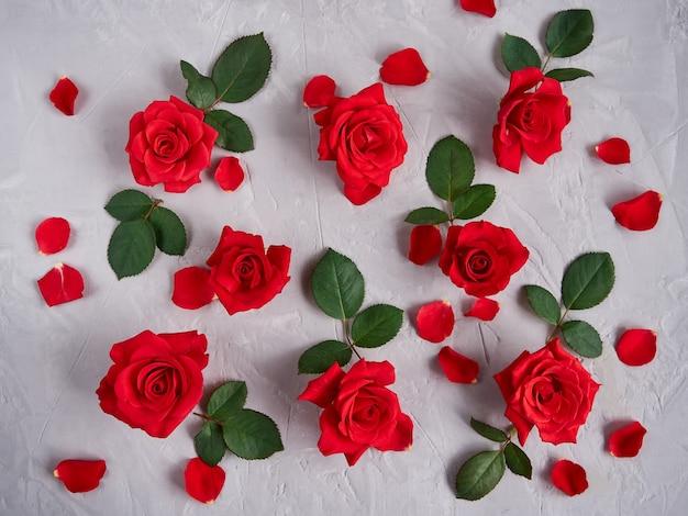 赤いバラの花、花びら、灰色のテクスチャ背景の葉 Premium写真