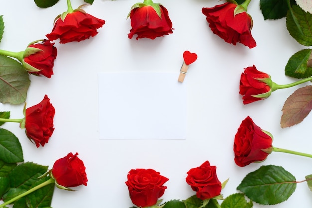 Red roses frame on a white background, copyspase. Premium Photo