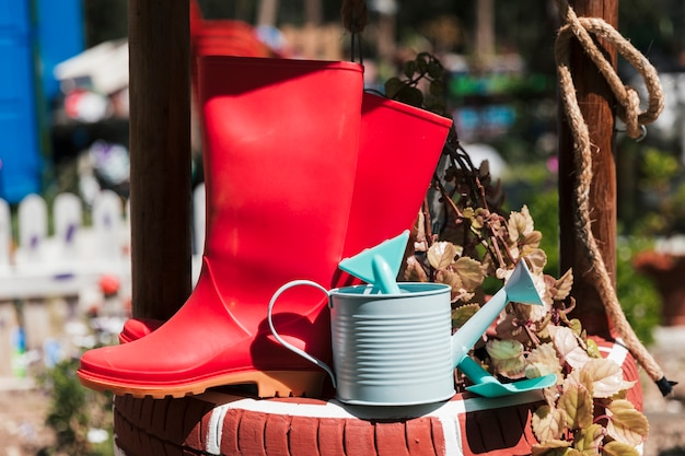 Red rubber boot; watering can and spade near the pot plant Free Photo