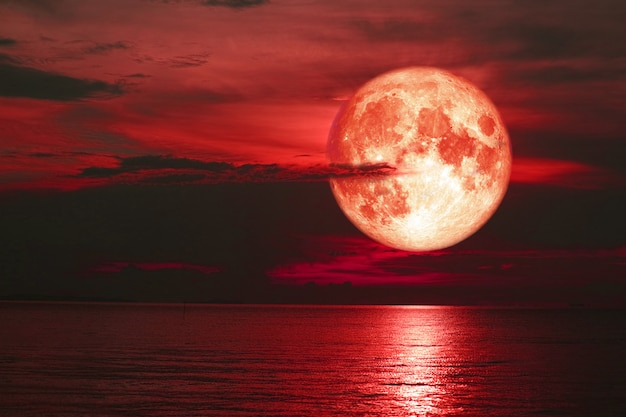 Red sturgeon moon back on silhouette cloud on the sunset sky Premium Photo