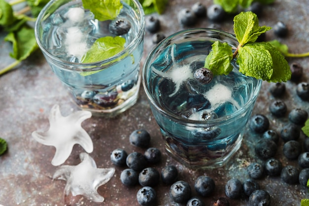 Refreshing drinks with blueberries mint and ice Free Photo