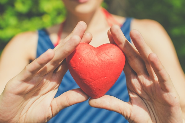 Relationship and love  womans hands holding red heart Premium Photo